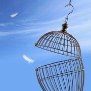 Commitment: Prison or Liberator?