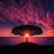 Meditation Calm Under Pressure